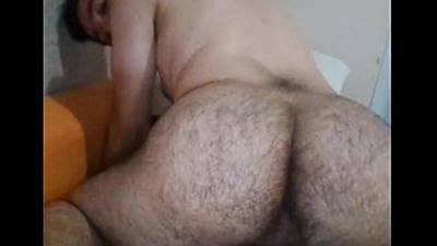 Urso mostrando cuzinho peludo num super gostoso